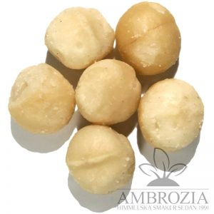 Macadamianöt macadamia nötter